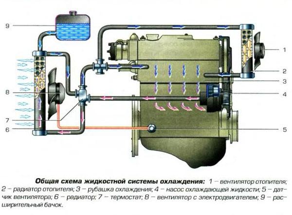 схема системы охлаждения двигателя ford aerostar 1991г.в.