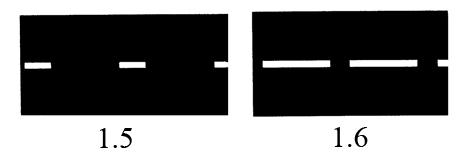 разметка 1.6